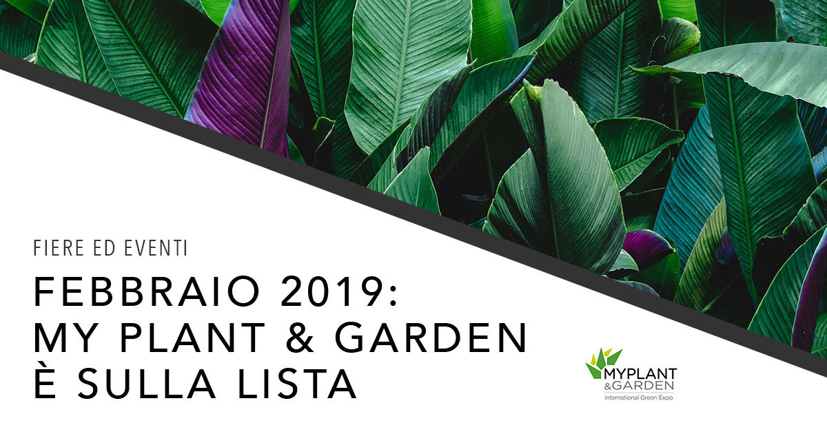 Eterno Ivica torna al MY PLANT 2019!